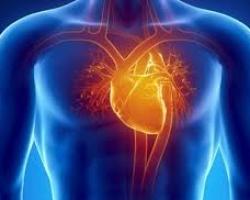 La Real Academia de Medicina y  Cirugía de la Región de Murcia le invita a la Sesión/Coloquio del Ciclo de Académicos Correspondientes. Cardiología - UCI